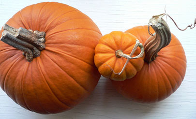 pumpkin-final