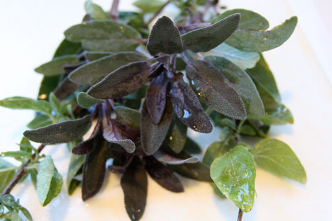 1012-herbs