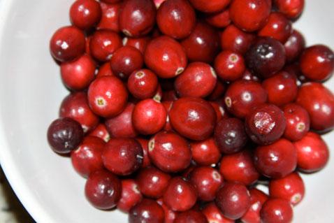 1023-cranberry-muffins-1