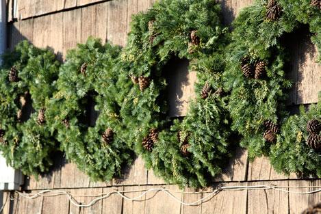tree-farm-wreaths
